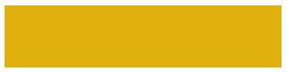 Joe's Princeton Taxi and Limousine Services, Logo
